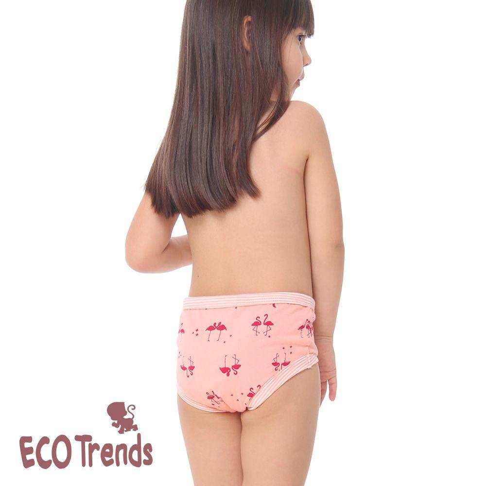 Kit bebê com 2 calcinhas de desfralde/treinamento Ecotrends - Flamingo