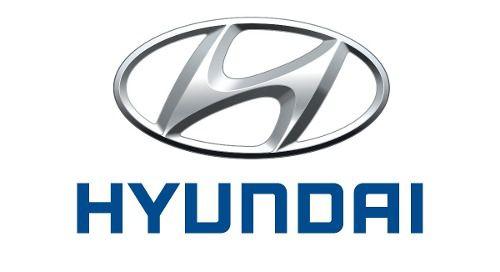 Aditivo Liquido Arrefecimento Original Hyundai