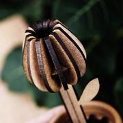 Broto Tulipa
