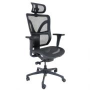 Cadeira Presidente Darix Mesh