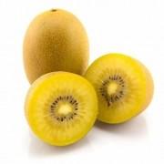 Kit Com 2 Mudas De Kiwi Gold , Ouro Ou Amarelo - Enxertadas!