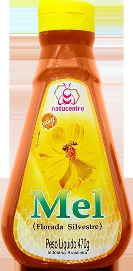 Bisnaga Mel Puro Florada Silvestre 470g - Natucentro