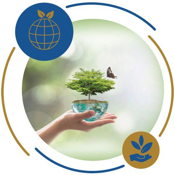 Diagnóstico Ambiental – Ferramentas e Métodos de Realização  - REDE FECOMÉRCIO DE EDUCAÇÃO