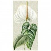 Tecido - Painel Antúrio (93cm x 47cm)