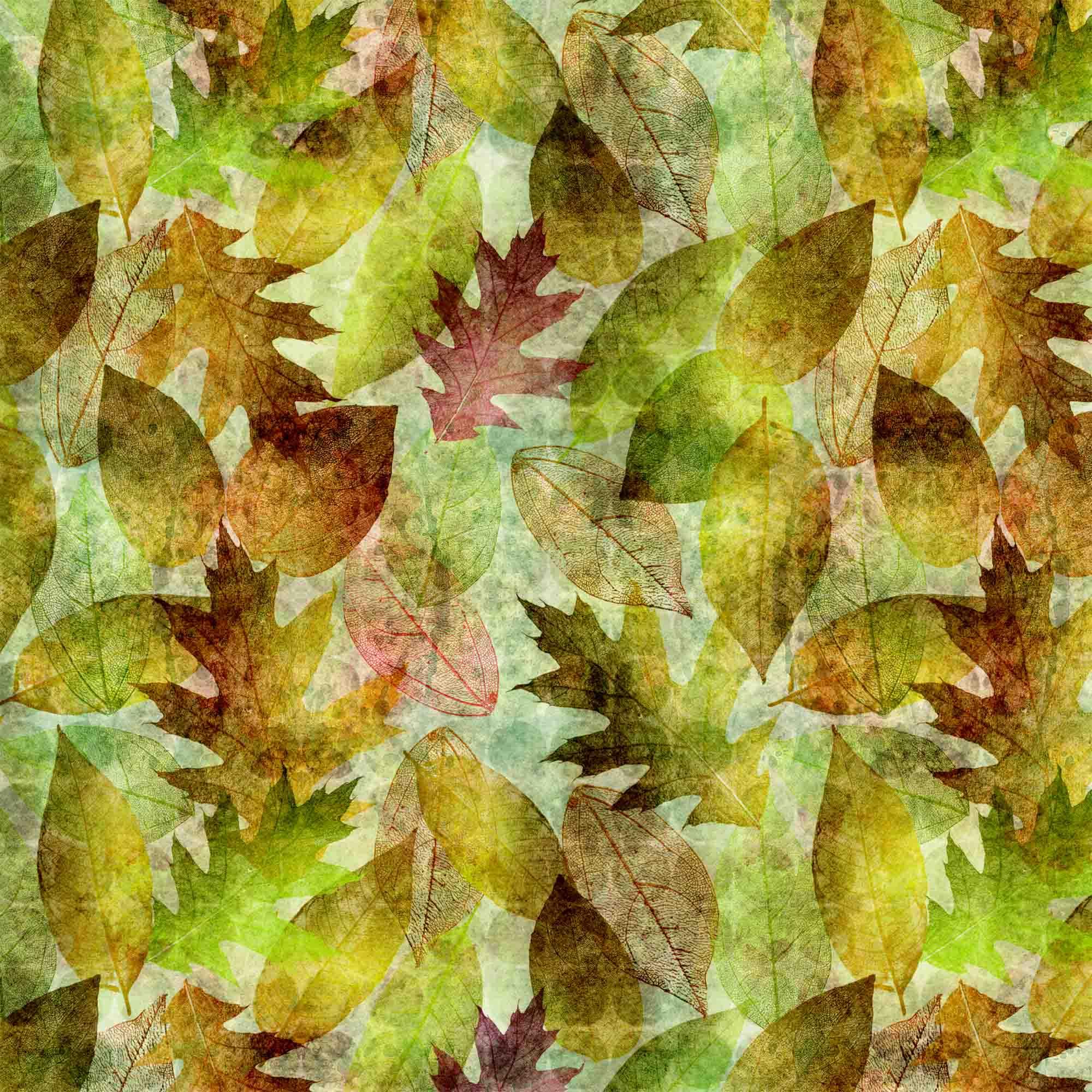 Outono Verde