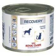 LATA ROYAL CANIN DOG CAT RECOVERY 195 GR