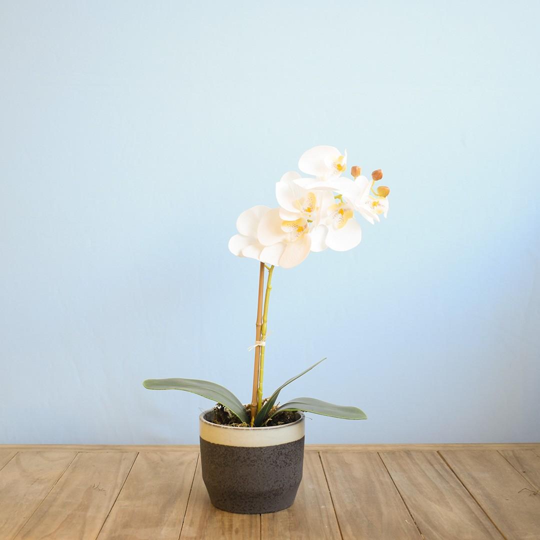 Arranjo de Flor Artificial Orquídea Branca no Vaso de Cerâmica Preto e Azul | Linha Permanente Formosinha