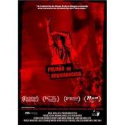 DVD Pulmão Da Arquibancada Raça Rubro-Negra Flamengo