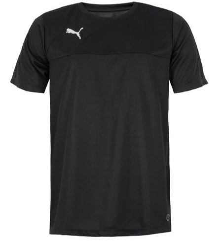 Camiseta Puma Entry Training Jersey