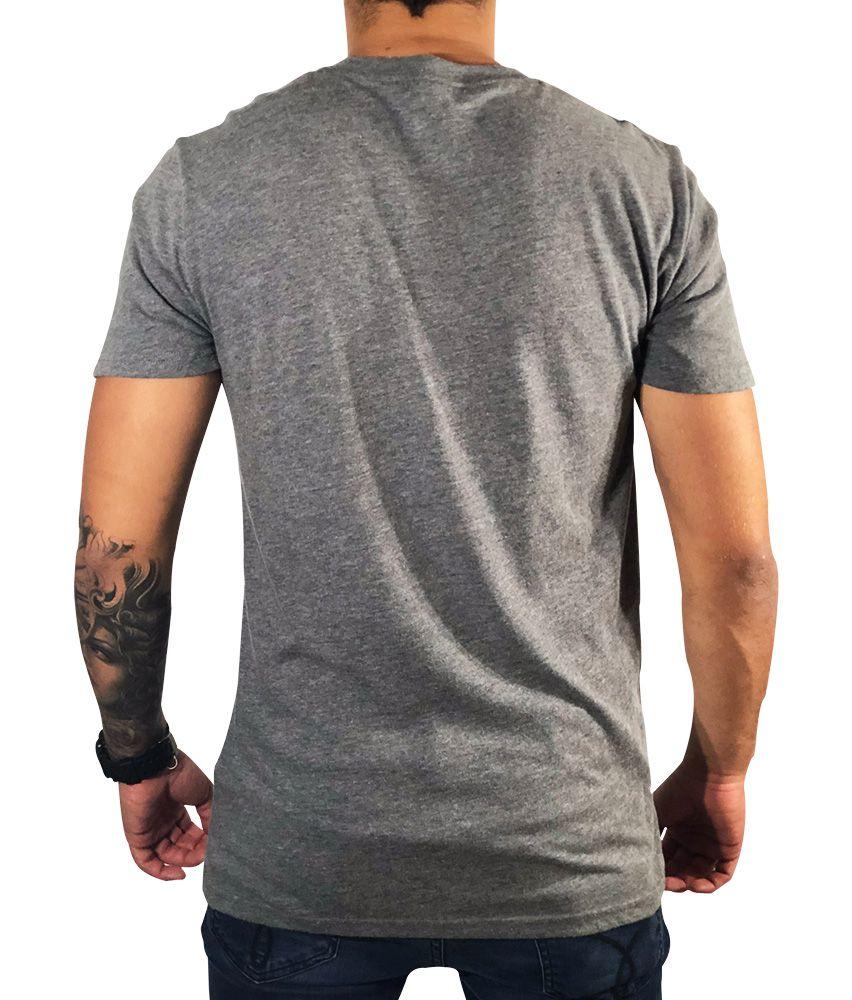 Camiseta Hollister Gráfica Cinza
