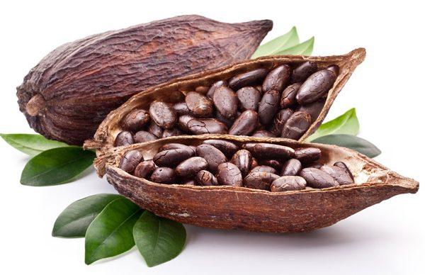 Barra BeeWay Premium Chocolate Orgânico 100% Cacau 45g