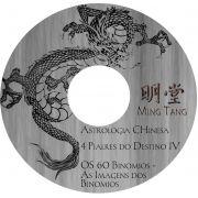 4 Pilares do Destino IV - Imagem do Destino - 60 Dragões