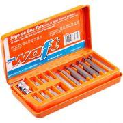 Jogo Bits Torx T20 a T55 com Adap. 15 peças