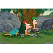 Painel Lona Phineas E Ferb mod06