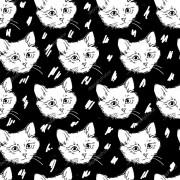 Papel De Parede Adesivo Animais Gato mod01