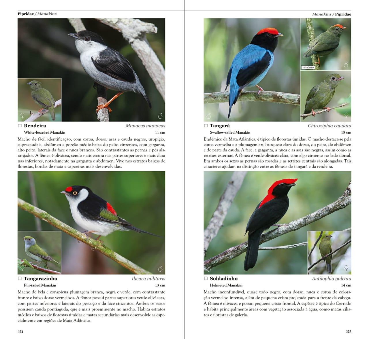 Aves do Estado de São Paulo