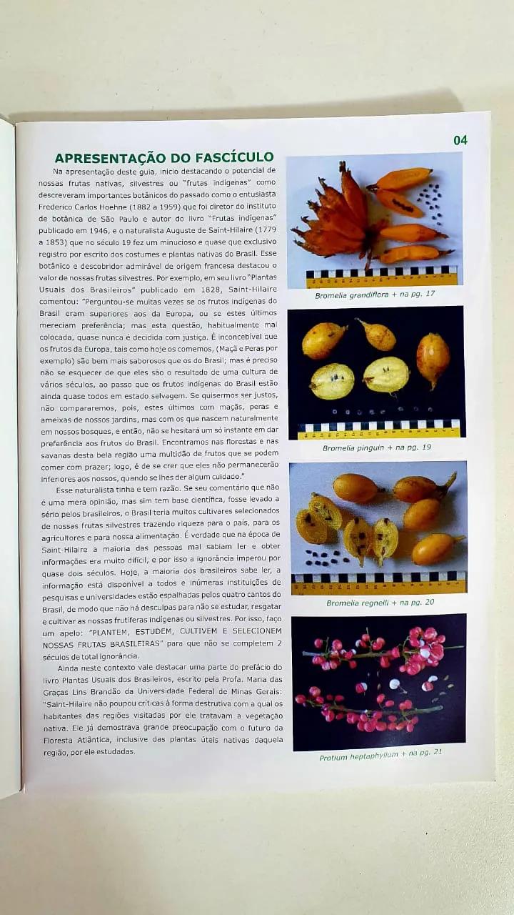 """COLEÇÃO DE FASCÍCULOS """"FRUTAS DO MATO"""" um guia de identificação, cultivo e usos."""