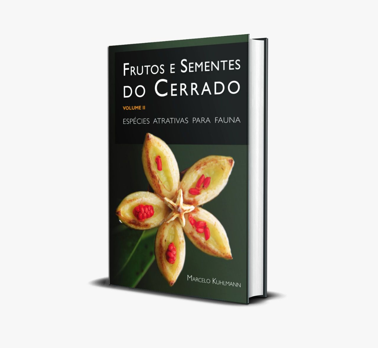 FRUTOS E SEMENTES DO CERRADO - VOLUME II