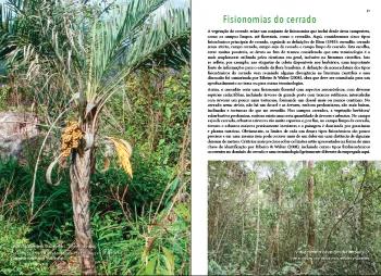 Guia das Plantas do Cerrado ( autografado pelo autor Vinicius Castro Souza )