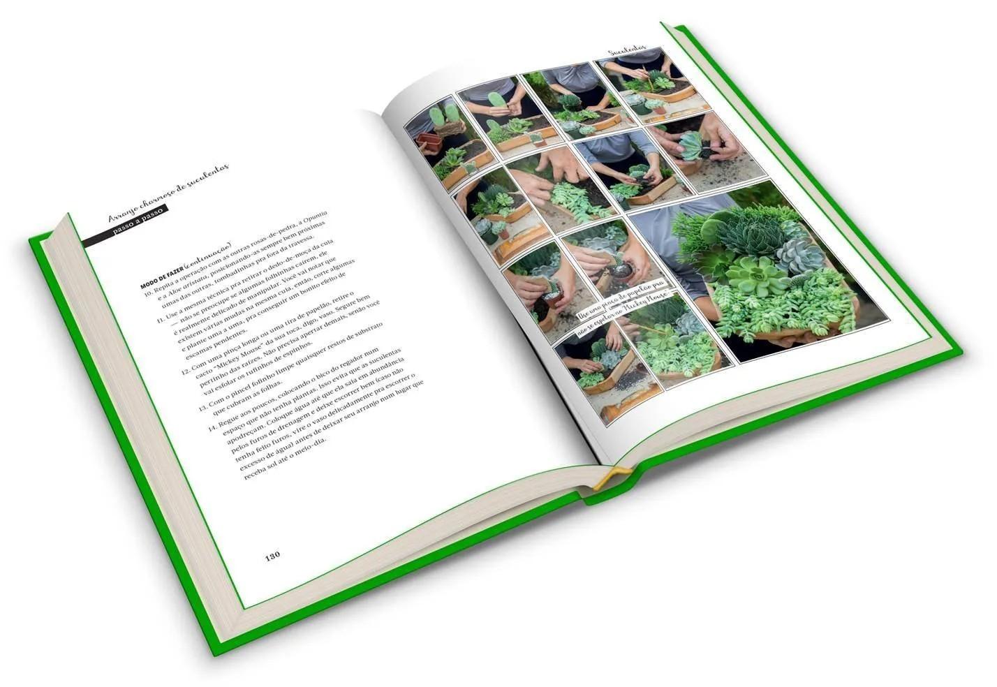 Minhas plantas: Jardinagem para todos (até quem mata cactos)