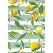 30 Quadrados de Borracha Top+ Estampado + Brinde de 30 pares de alças - Modelo Lemon