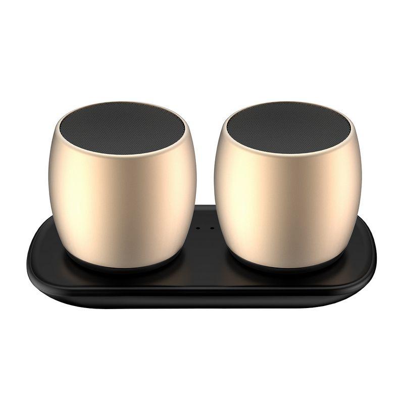 Mini Speaker Stereo F1 Sardine