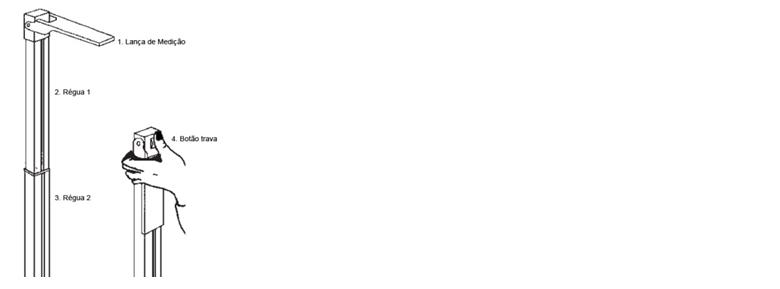 Estadiômetro Adulto em Alumínio - Fixo - 60– 220 cm - TL 220 -  Teklife
