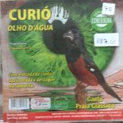 CD Curio Olho DAgua - Série Esmeralda