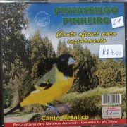 CD Pintassilgo Pinheirinho - canto oficial de ensinamento do canto metálico