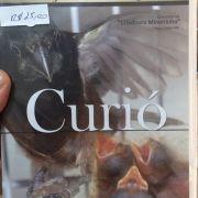 DVD Criação Avançada de CURIOS