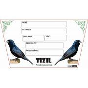 Placa de Identificação Luxo Tiziu - 527TZ