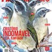Revista Passarinheiros N78