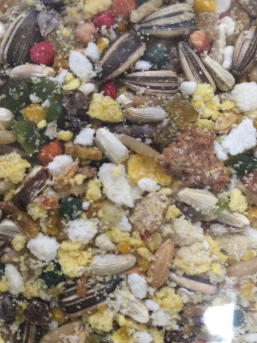 Mistura Belga Especial Trinca Ferro ( Milho Verde c/ Frutas )