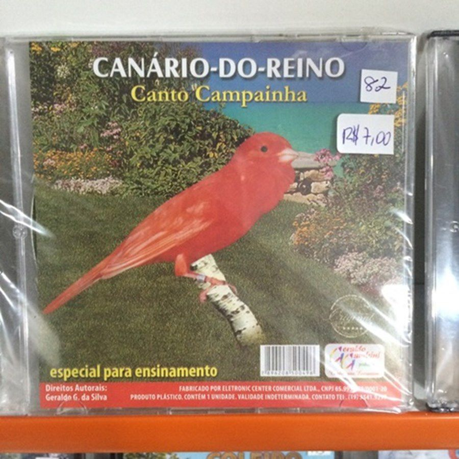 CD canario do reino - canto campainha