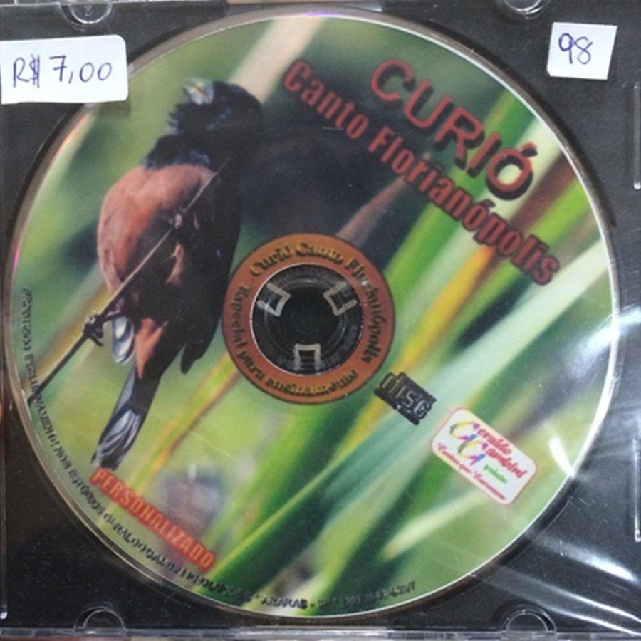 CD Curio Canto Florianópolis
