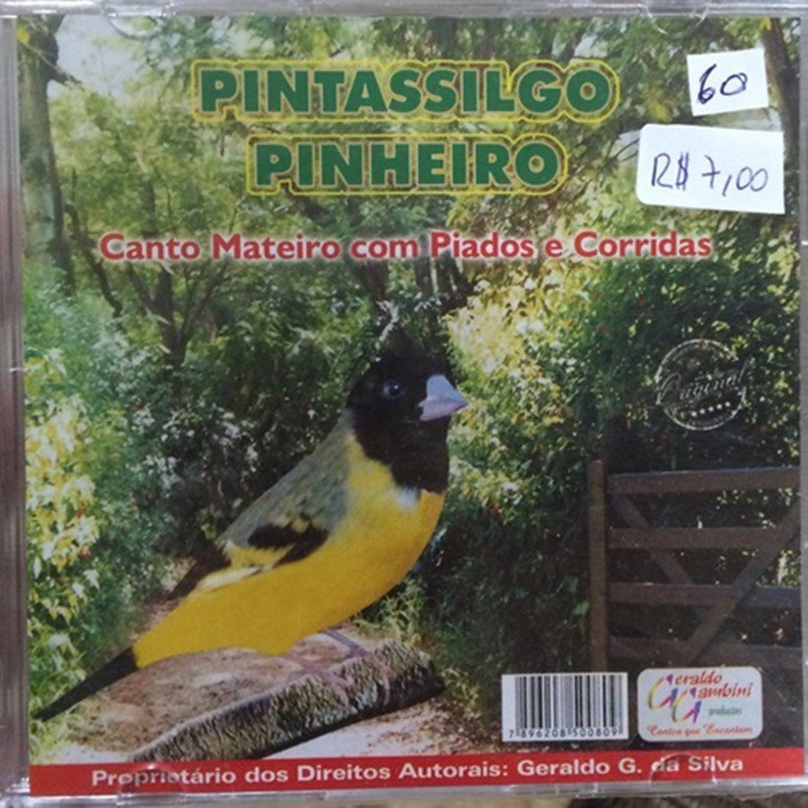 CD Pintassilgo Pinheirinho - canto mateiro com piados e corridas
