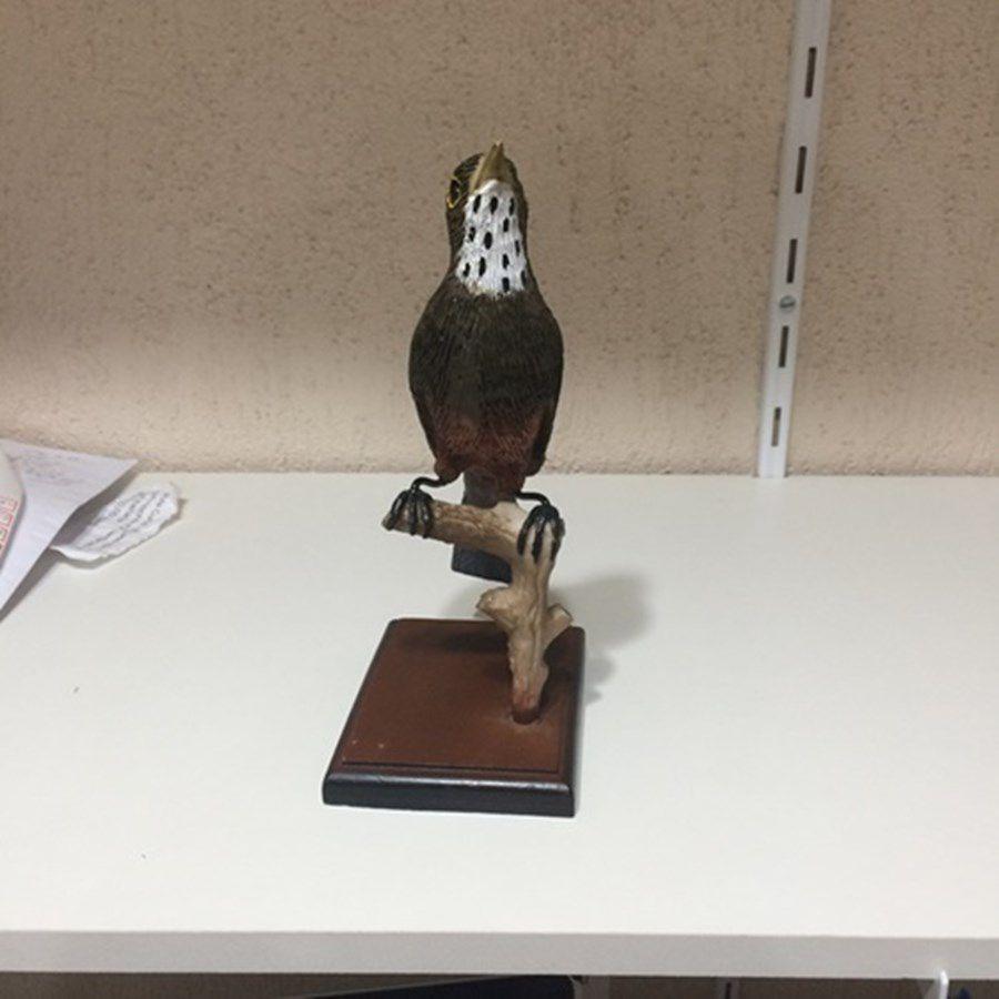 Estatua Universo do Curio e Cia ( Sabia Laranjeira )