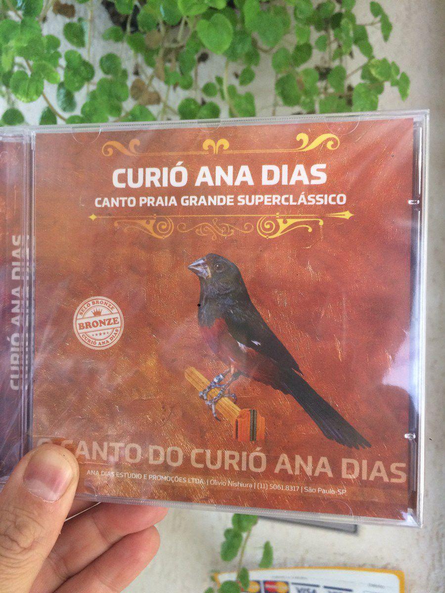 LANÇAMENTO NACIONAL : CD Bronze