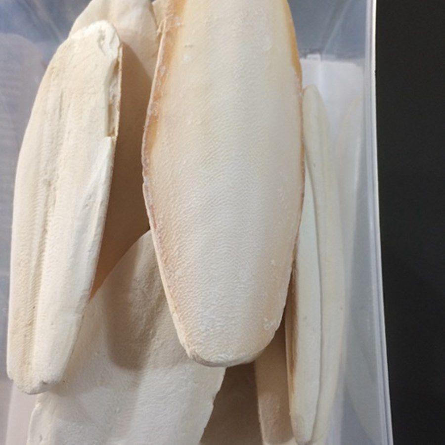 Melhor Osso de Siba do Mundo - Feito da Sepia