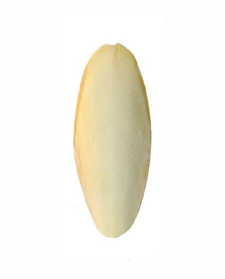 Osso de Siba Importado Grande (16 a 25 cm)