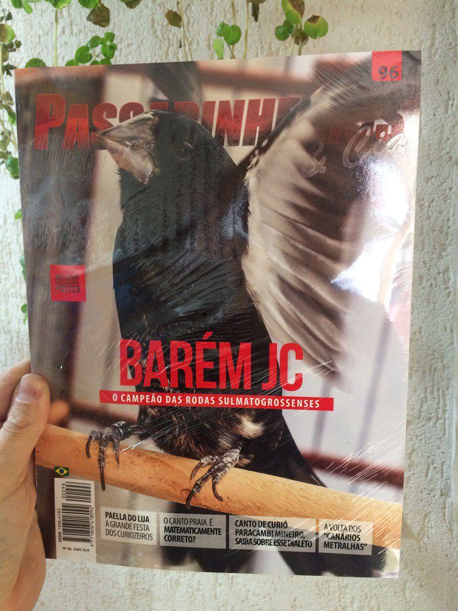 Revista 96