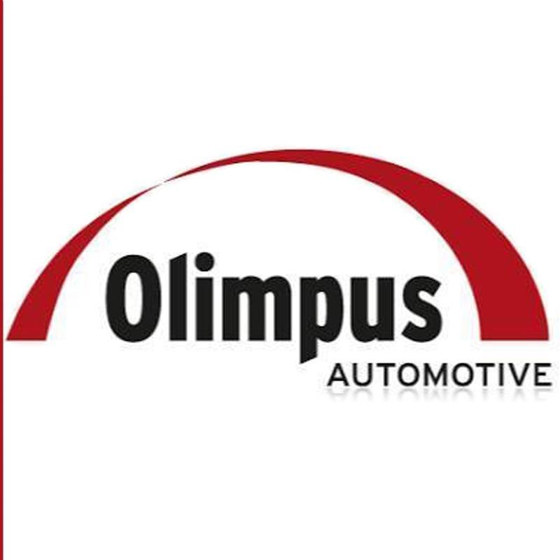 Haste De Antena Olimpus Tektron 40cm e Rosca De 5mm  - EvolutionStore - Peças e Acessórios Automotivos