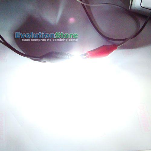 Lâmpada T10 w5w Pingo Super Branca Esmagada Grande 12v Orbe Iris (Par)  - EvolutionStore - Peças e Acessórios Automotivos