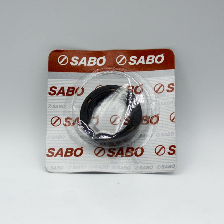 Retentor Comando de Válvula - Renault CLIO KANGOO LOGAN SANDERO SCENIC -  SABÓ 05795BRG