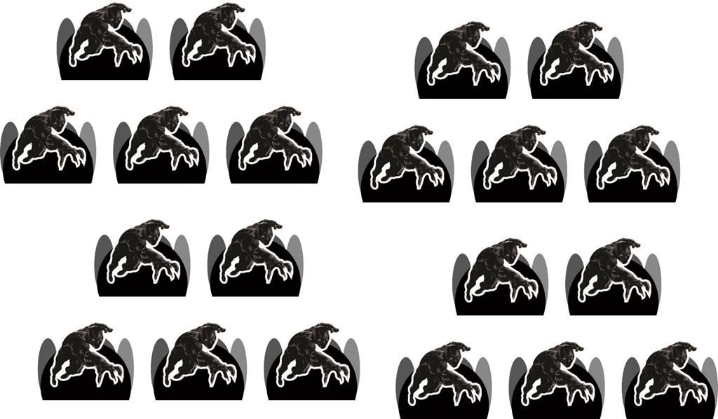 Festa Pantera Negra 178 peças (20 pessoas)