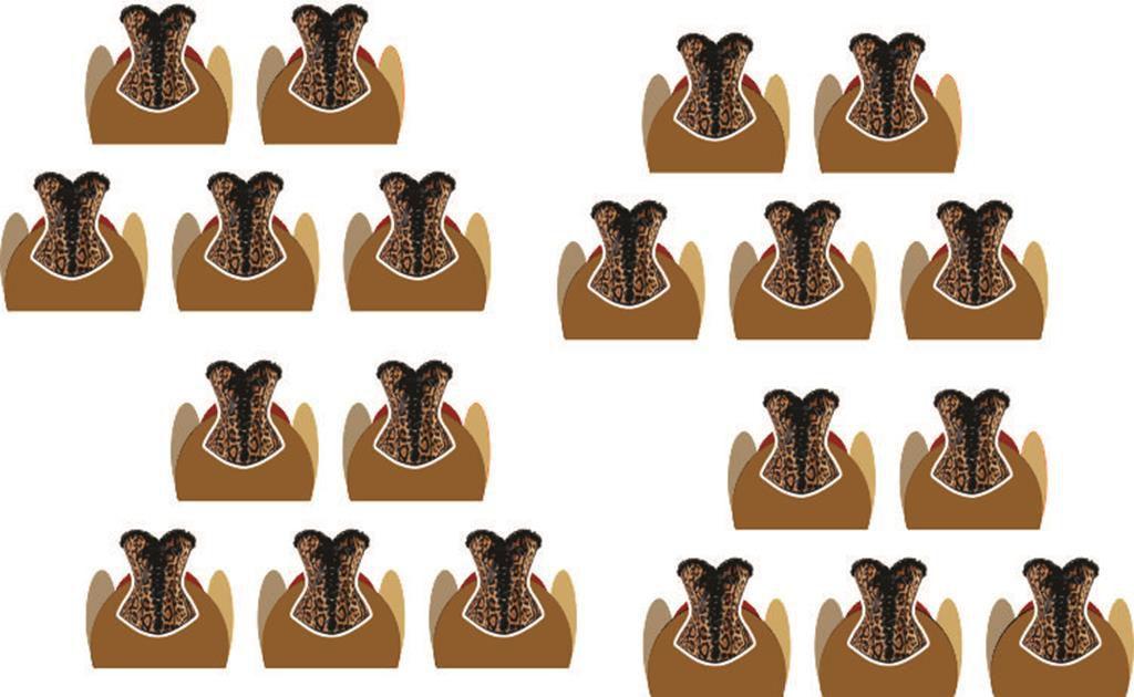kit festa Chá de Lingerie Oncinha 143 peças