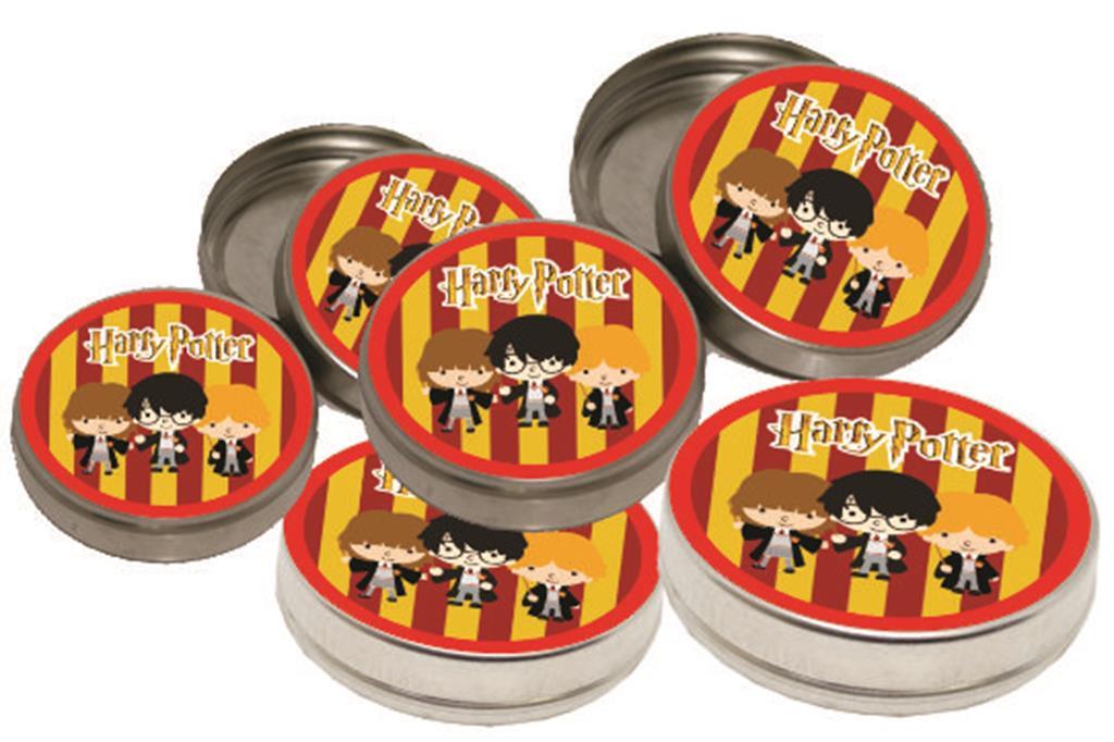 Kit Festa Harry Potter 265 Peças