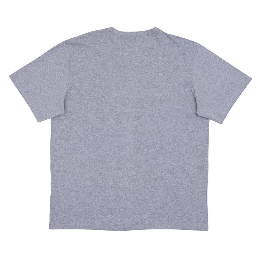 Camiseta Element Blazin PS