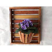 Painel Com Moldura De Madeira Para Flores Plantas 1 Vaso