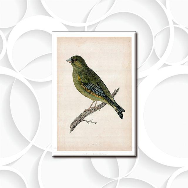 Poster Decorativo Pássaro PL308